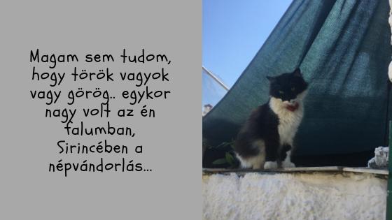 Sirince_hurremsbazaar